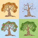 Träd för fyra säsonger Arkivbilder