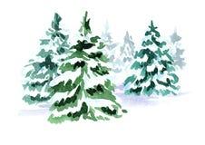 Träd för gran för vinterskogjul Dragen illustration för vattenfärg som hand isoleras på vit bakgrund stock illustrationer
