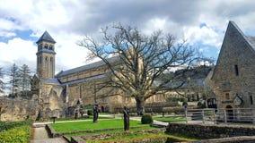 Träd för kyrklig byggnad för slottstad Royaltyfri Foto