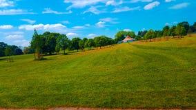 Träd för landskap Park Royaltyfria Bilder