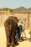 Träd för Ledare-show elefantteckning på golvet i zoo, T royaltyfri foto