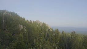Träd för skog för berg för sikt för bergmaxima Bergig terräng och skog i dimman Härlig skog och berg Royaltyfri Fotografi