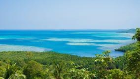 Träd för skogdjungelgräsplan med blått vatten som bakgrund i avstånd med flyg- sikt i karimunjawa fotografering för bildbyråer