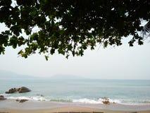träd för viwe för havspuketpatong Royaltyfria Bilder