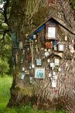 Träd festooned med sakrala bilder Royaltyfria Foton