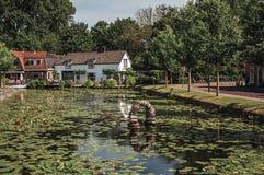 Träd-fodrad kanal med vatten- växter, gator på bankerna och tegelstenhus på en solig dag i Weesp Royaltyfri Fotografi