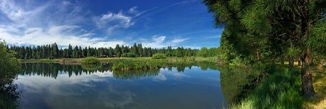 Träd fodrad sjö i systrar, Oregon Arkivbild
