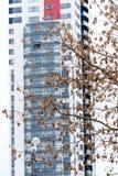 Träd framme av ett modernt hus Royaltyfri Foto