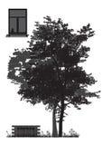 Träd framme av huset Arkivbild