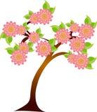 Träd i blomning vektor illustrationer