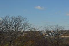 Träd i förgrund med hus som är synliga i bakgrund med klara skys fotografering för bildbyråer