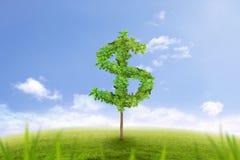 Träd i formen av dollartecknet, finansiell framgång Arkivfoton