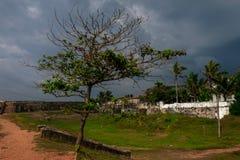 Träd i fort i kuling, Sri Lanka Gammal stad och dramatisk himmel arkivbild