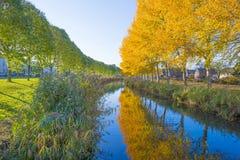 Träd i nedgångfärger längs en kanal i ett bostadsområde i solljus royaltyfri foto