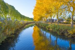 Träd i nedgångfärger längs en kanal i ett bostadsområde i solljus royaltyfria foton