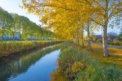 Träd i nedgångfärger längs en kanal i ett bostadsområde i solljus arkivfoto