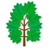 Träd i plan stil också vektor för coreldrawillustration Arkivbild