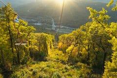 Träd i skogen, berglandskap, härlig sikt av bergen, folk i bergen, naturreserv arkivbilder