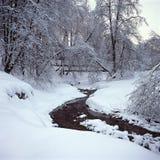 Träd i snö, Kolomenskoe, Moskva, Ryssland Arkivbilder