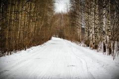 Träd i snö runt om vägen i vinterskog royaltyfri foto