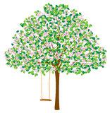 Träd i vår Arkivbild