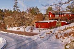 Träd i wintergardenen Arkivfoton