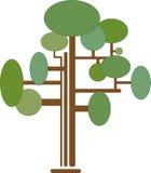 Träd Infographics pedigree royaltyfri illustrationer