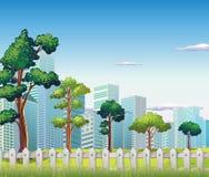 Träd inom staketet nära de högväxta byggnaderna Arkivfoto