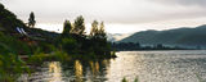 Träd inverterade reflexion i vatten Arkivfoton
