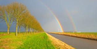 Träd längs en kanal nedanför en regnbåge Arkivbilder