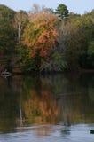 Träd längs floden i höst Arkivbild