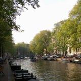Träd längs kanalen Royaltyfri Bild