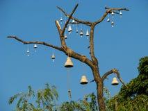 Träd med att dingla leraklockor arkivbild