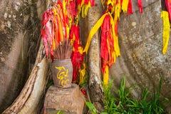 Träd med band i econationalparken Yang Bay i Hna Trang, Vietnam fotografering för bildbyråer
