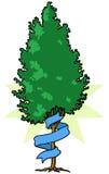 Träd med bandet Royaltyfri Fotografi