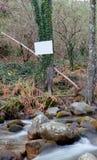 Träd med en tom kartell bredvid en vattenfall Arkivfoton