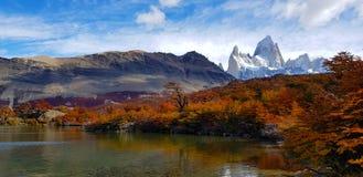 Träd med höstfärger och monteringen Fitz Roy, Patagonia, Argentina fotografering för bildbyråer