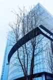 Träd med kala filialer mot bakgrunden av en modern glass byggnad fotografering för bildbyråer