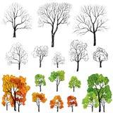Träd med och utan tjänstledighetuppsättningen. Blom- symbolssamling för fyra säsonger