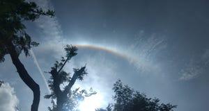 Träd med regnbågen och molnen royaltyfria foton