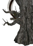 Träd med trappa Arkivbilder