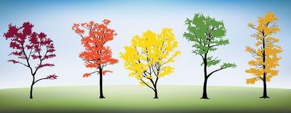 Träd mega packe Arkivbilder