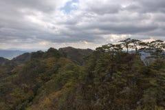 Träd, moln & höstfärger Arkivbilder