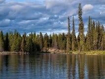 Träd och dramatiska moln över den övreStikine floden i British Columbia, Kanada Arkivbild