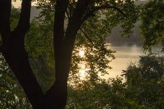 Träd och en sjö med en reflekterande sol efter soluppgång Royaltyfria Foton
