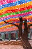 Träd och färgrika pappers- lyktor på den Jogyesa templet Arkivfoto