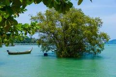 Träd och fartyg på vattnet arkivbilder