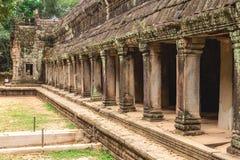 Träd och gallerier i templet för Ta Prohm, Cambodja arkivfoton