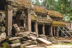 Träd och gallerier i templet för Ta Prohm, Cambodja arkivbild