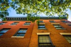 Träd och gamla tegelstenbyggnader i Mount Vernon, Baltimore, Maryla Arkivbild